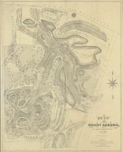 Plan of Mount Auburn, Alexander Wadsworth, 1831.