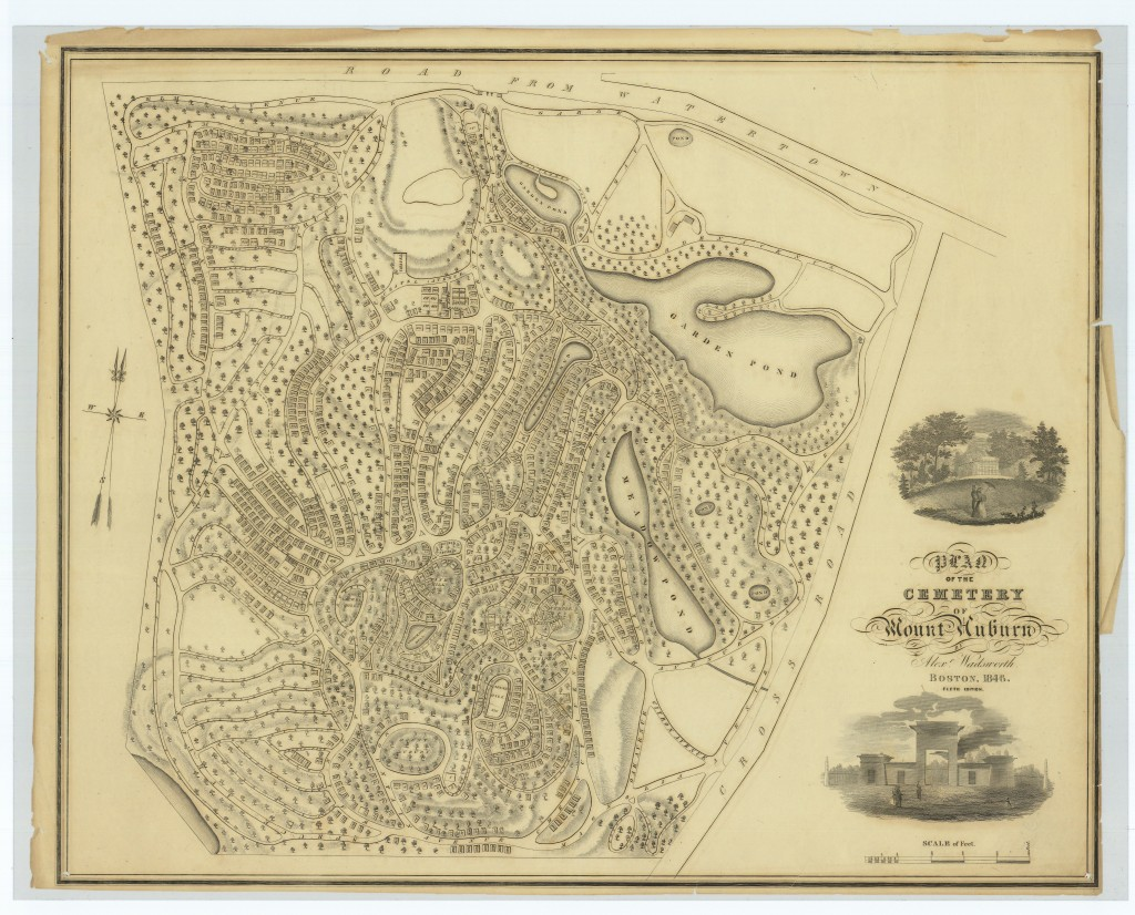 Wadsworth's Plan of Mount Auburn dated 1846 shows a 'Scale of Feet.' In this plan, Wadsworth's fifth, more than 1200 numbered lots are laid out.