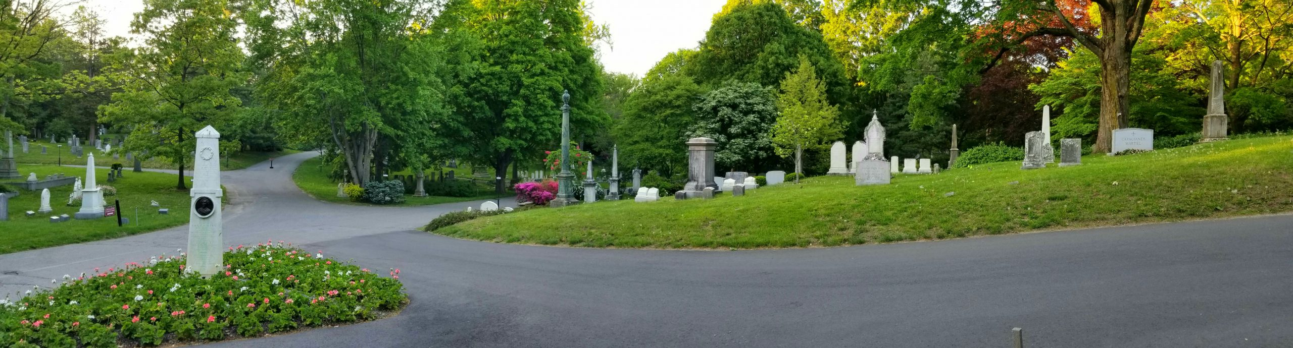 A rolling landscape with mature canopy trees and ornate memorials.