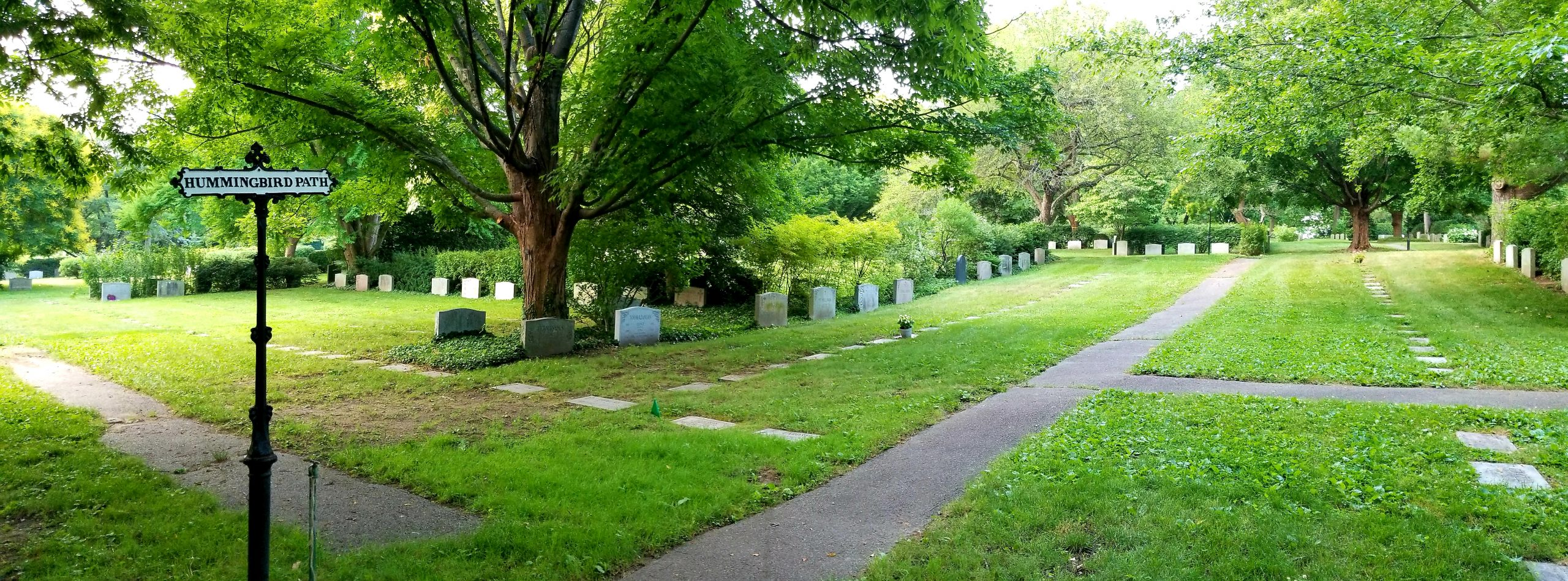 A flat grassy area, enclosed by hedges with linear rows of granite memorials. A row of upright monuments frames the area and row flat makers appear closer to the paved paths.