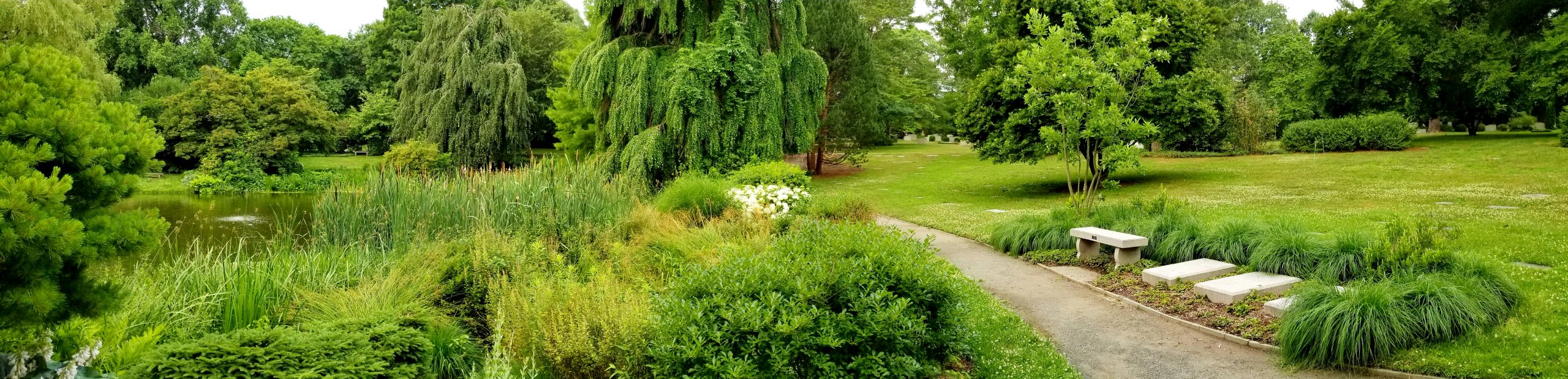 Three granite tablets are set into a bed of groundcovers and ornamental grasses at the edge of a crushed stone path. Willow Pond, edged with ornamental grasses, flowering shrubs, and aquatic plants, is on the opposite side of the path. A bench, offering a place to sit, is situated next to the granite tablets.