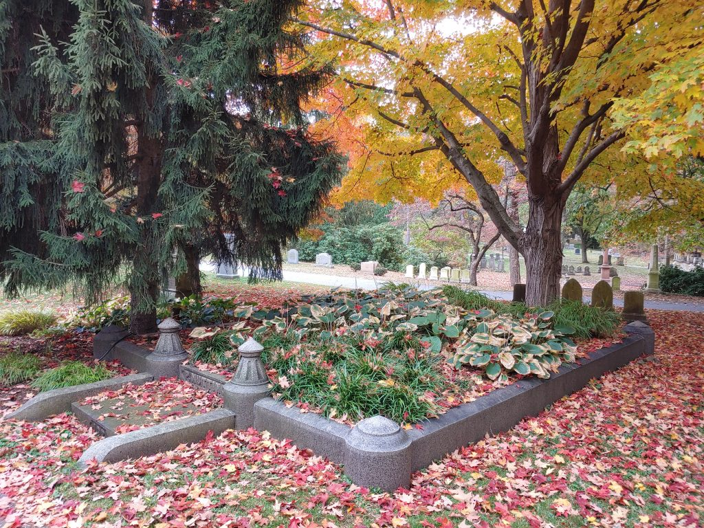 A square family lot is enclosed by a granite wall approximately 1 foot in height.  The lot is covered with low green plants. Red and yellow leaves are on the ground and behind the lot a tall tree is covered in yellow leaves.