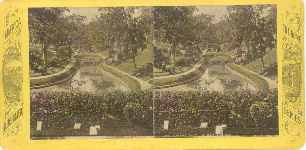 Forest Pond, Mount Auburn. Hand colored stereo view, circa 1870-1880.