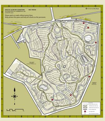 a map of the cemetery may be marked with the lot or grave location please note that mount auburn lots are not numbered sequentially along roads and paths