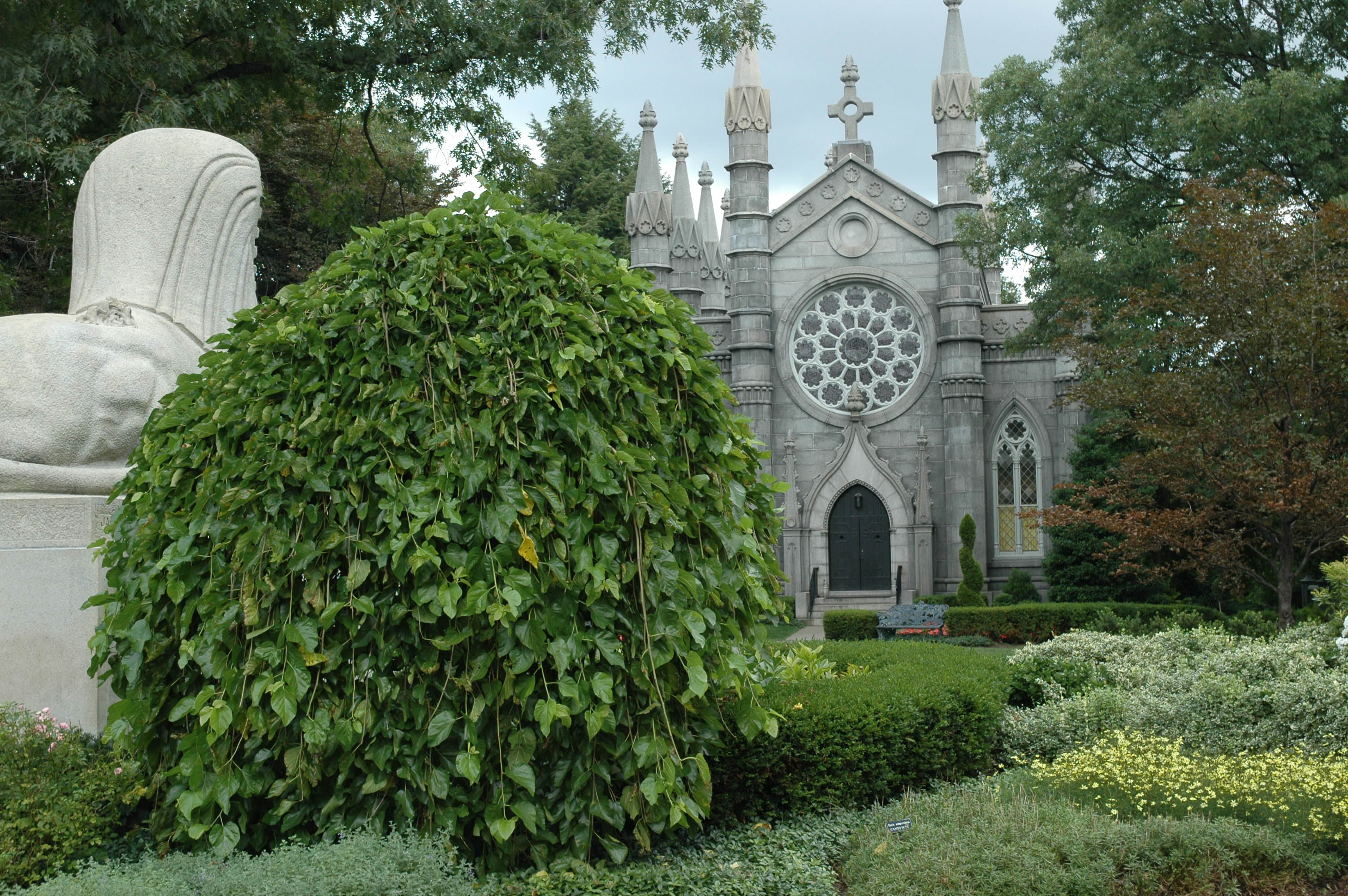Wedding Ceremonies | Mount Auburn Cemetery